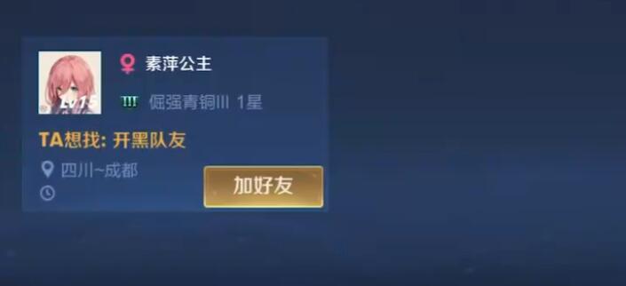 王者光荣素萍首页主是谁账号是首页一个