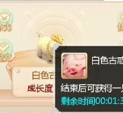 大话西游任你博娱乐官网平台培养萌猪全面攻略 错误操作盘点