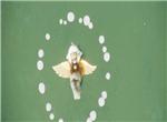 光遇云野蘑菇圈什么时候出现位置在哪里