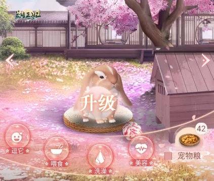 萌宠升级互动答疑《兰陵王妃》宠物详细攻略一网打尽!