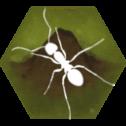 最后的蚂蚁中文版