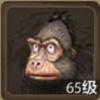 大猩猩珍兽