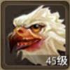 鹰特殊珍兽