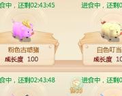 大话西游手游萌猪玩法优化解读及养猪攻略