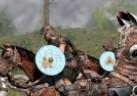 骑马与砍杀2长杆武器天赋一览