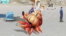 天谕手游蟹蟹自行车在什么位置